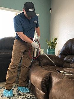 Flagstaff bed bug exterminators